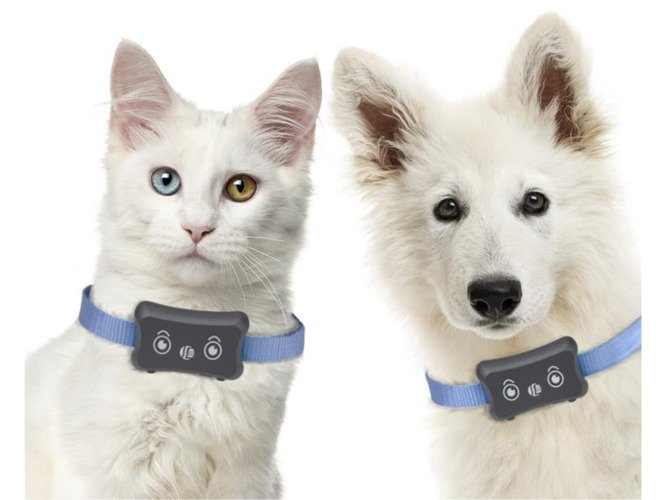 GPS Tracker for pets AW18